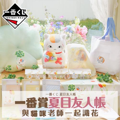 一番賞 《夏目友人帳-與貓咪老師一起識花》(代理版)
